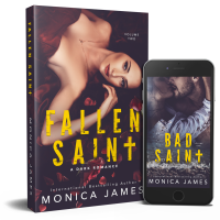 Fallen Saint: All The Pretty Things Trilogy Volume 2 by Monica James